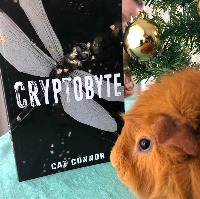 Timmy wants you to read Cryptobyte. That's right, he does!